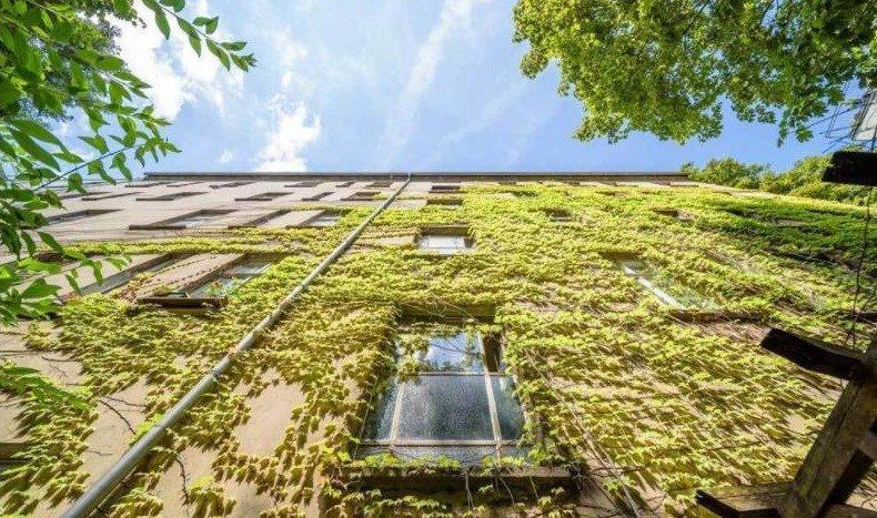 Schöne und pflanzliche Außenseite (Prenzlauer Allee)